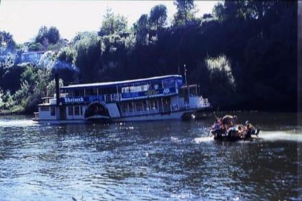 Gegenverkehr auf dem Waikato River - Raddampfer Waipa Delta (geschlossen)
