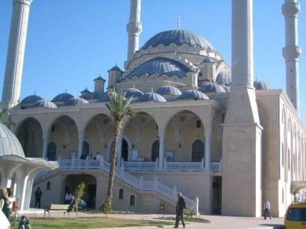 Schöne Moschee - Tour & Ausflug