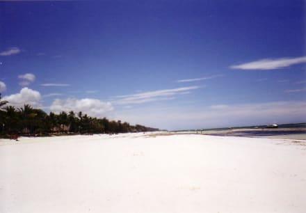 Ebbzeit - Tauchen & Schnorcheln Diani Beach