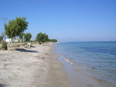 Naturstrand von Tigaki - Strand Tigaki