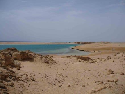 Sinai - Ras Mohammed Nationalpark