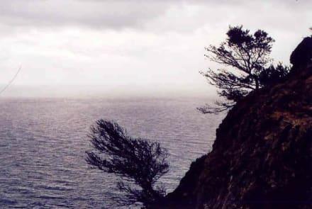 herrliche Ausblicke - Cap Formentor