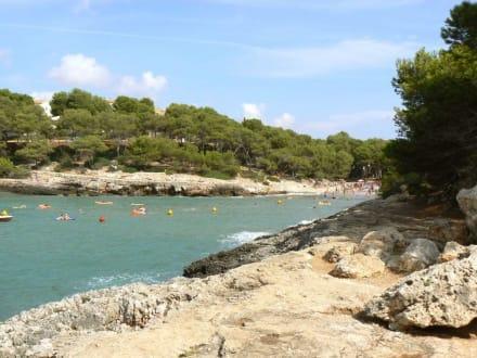 Blick Richtung Strand - Cala sa Barca