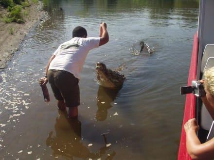 Crocodile Man Tour - Rio Tarcoles