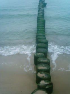 Strand - Strand Graal-Müritz