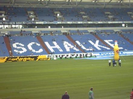 Das schönste Stadion der Welt - Schalke 04 Veltins-Arena