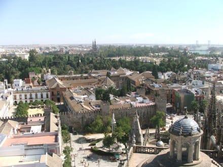 Tempel/Kirche/Grabmal - Kathedrale von Sevilla