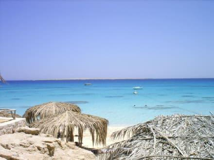 Schnorchelausflug auf eine Paradies Insel - Giftun / Mahmya Inseln