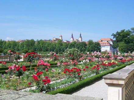 Blühendes Barock - Schloß Ludwigsburg