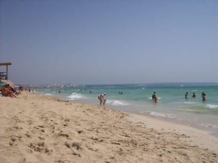 Strand von Palma de Mallorca - Strand Playa/Platja de Palma