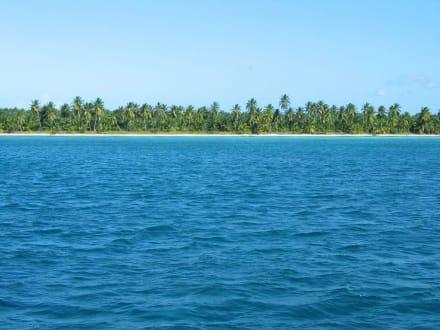 Fahrt zur Insel Saona - Isla Saona