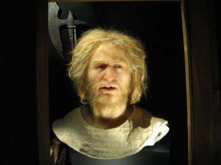 Kopf des Störtebecker - Museum für Hamburgische Geschichte