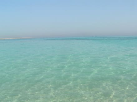 Giftun Insel - Giftun / Mahmya Inseln