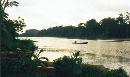 am Rio Pacuare - Nationalpark Tortuguero
