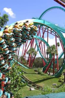 Busch Gardens Achterbahn Kumba - Busch Gardens