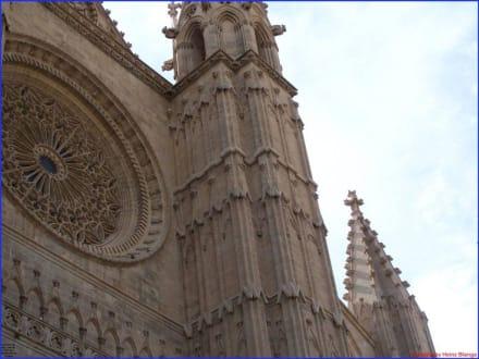 Dach der Kathedrale - Kathedrale La Seu