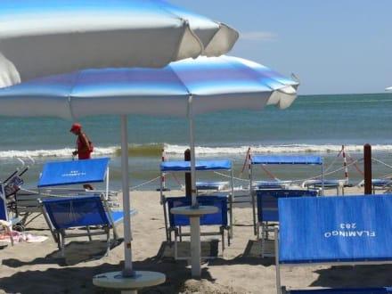 1. Reihe - Flamingo Beach