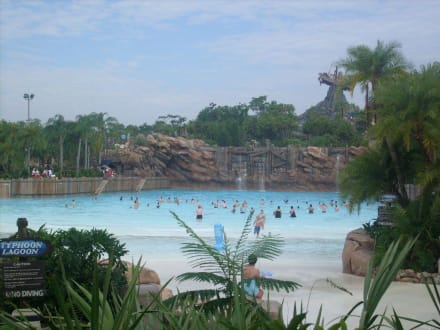 Typhoon Lagoon  Das Becken der Riesenwelle - Disney's Typhoon Lagoon