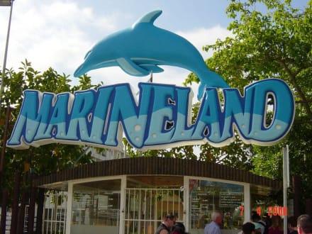 Eingang Marineland - Marineland