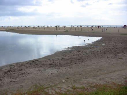 Meer-Strand - Dünen von Maspalomas