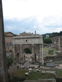 Forum Romanum - Forum Romanum