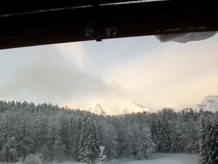 Früher Morgen - Alm- & Wellnesshotel Alpenhof