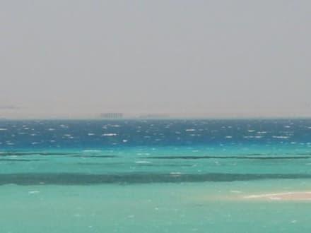 Ausflug Sandy Island - Tobia Island
