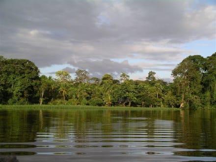 Tortuguero Nationalpark - Nationalpark Tortuguero