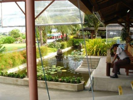 Flughafen von Koh Samui - Flughafen Koh Samui (USM)