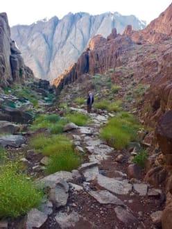 Auf 3000 Stufen vom Mosesberg zum Katharinenkloste - Mosesberg (Gebel Musa) / Berg Sinai