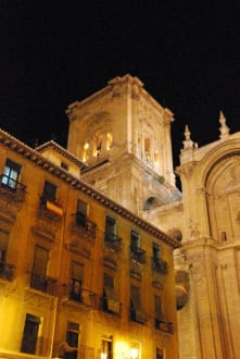 Religious sites (churches, temples, etc.) - Cathedral Granada