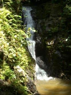 Da ist er  - Ton Sai Wasserfall