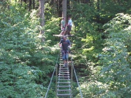 Kletterwald Niederrhein - Kletterwald Niederrhein