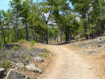 Weg zur Ruine von Lybre/Seleukeia - Antike Stadt Seleikeia (Lyrbe)