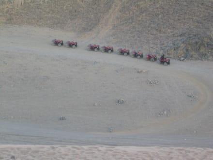 Primasol Beach Albatros Resort - Quad Tour Hurghada