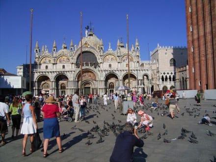 Dom - Basilica di San Marco / Markusdom