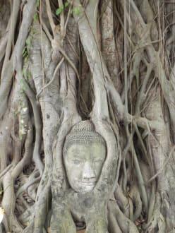 Stadt/Ort - Historisches Ayutthaya
