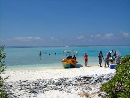 auf Bushyisland - Inselhopping Addu Atoll