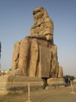 Der rechte von den Memnon Kollossen - Kolosse von Memnon
