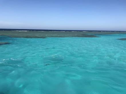 Sataya - Sataya Riff Marsa Alam