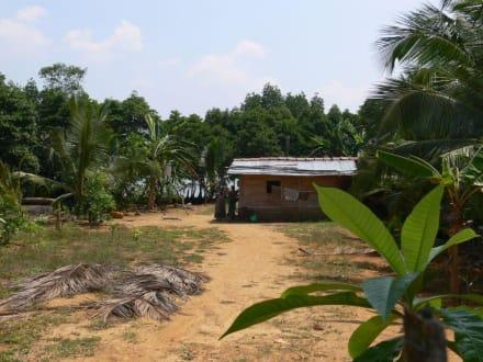 Bauernhaus am Koggala See - Koggala See