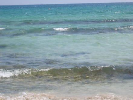 Meer - Strand Ayia Napa/Agia Napa