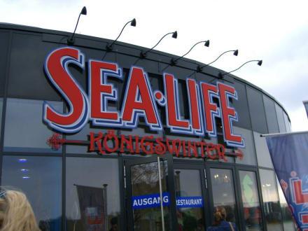 Sealife Königswinter - Sealife Center Königswinter