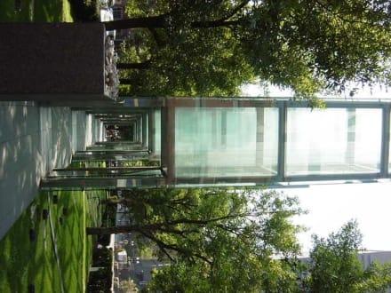 Holocaust Memorial in Boston - New England Holocaust Memorial