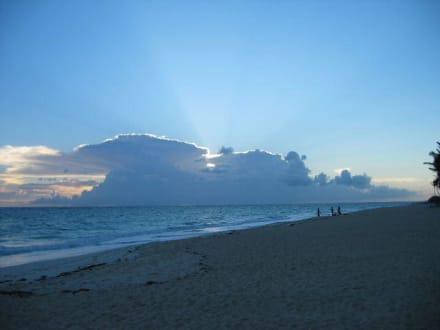 Bavaro Beach - Playa Bávaro