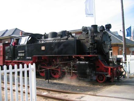Dampflok Molli - Bäderbahn Molli Bad Doberan - Kühlungsborn