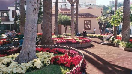 Park bei englischer Kirche - Plaza de la Iglesia