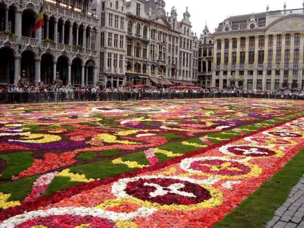 Brüssel - Grote Markt (Marktplatz) - Grand Place / Grote Markt