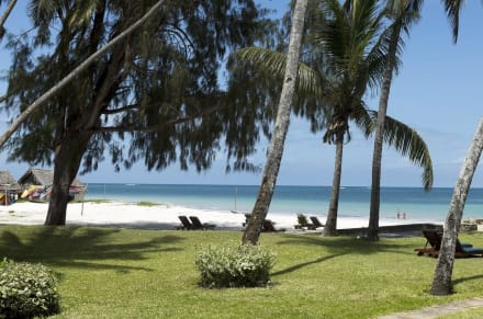 Ocean View from garden  -