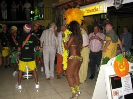 Musikgruppe im La Cucaracha - La Cucaracha Bar